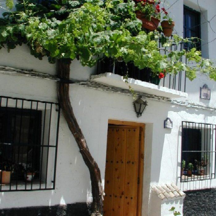 Casa Las Parras